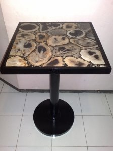 Petrified Wood Mosaic Table