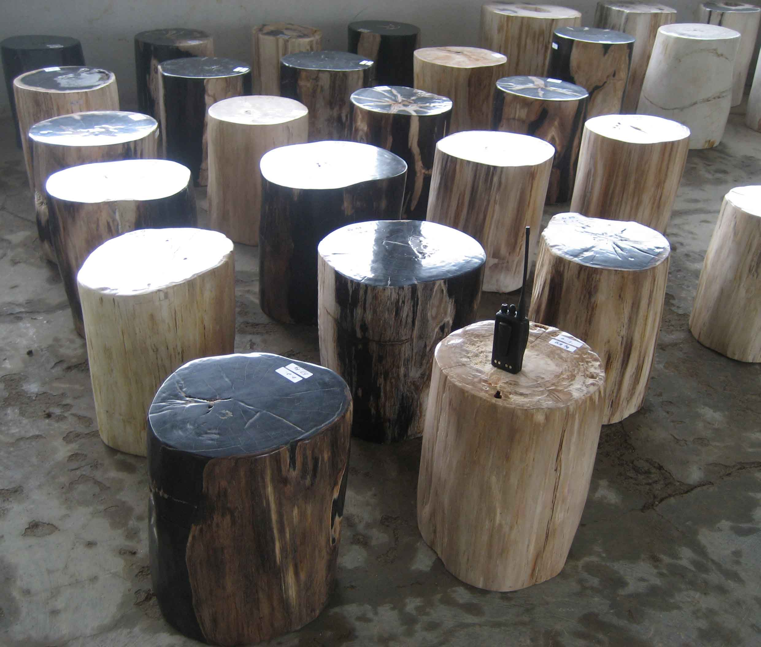 Petrified Wood Stools IndoGemstone
