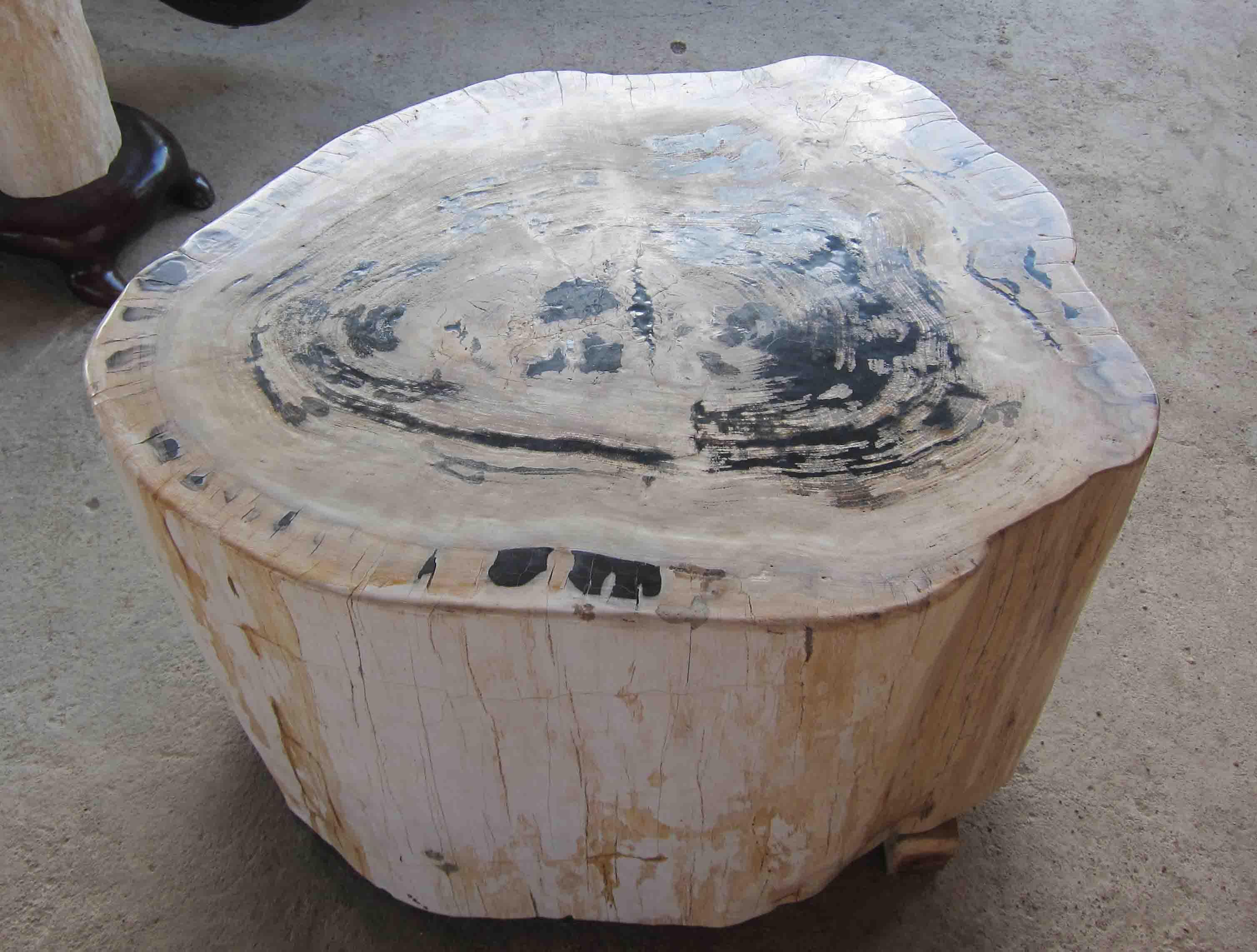 Petrified wood table indogemstone unusual home decor for Petrified wood furniture for sale