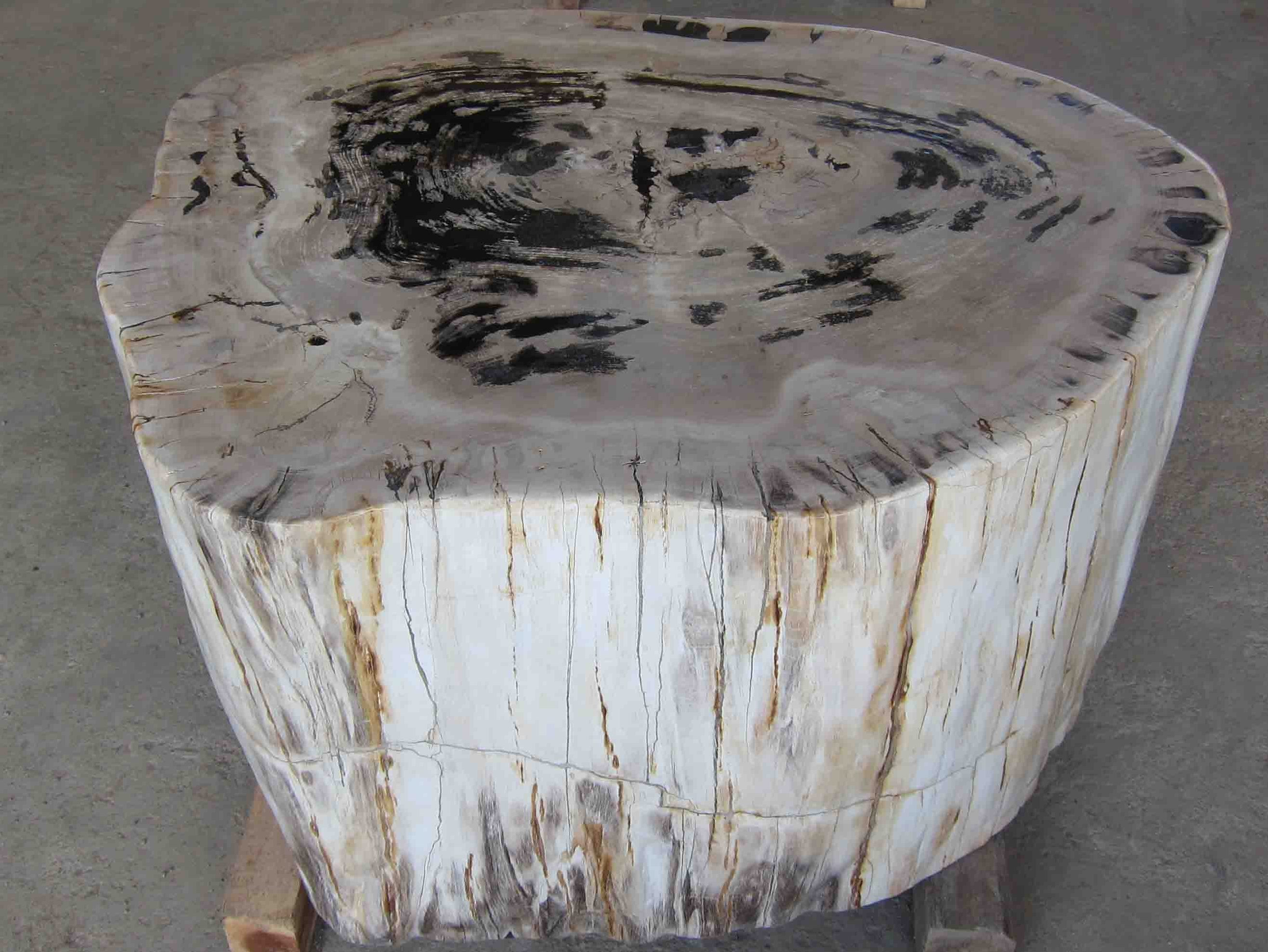Petrified Wood Table for sale from IndoGemstone com. Petrified Wood Tables for sale   IndoGemstone   Unusual Home Decor