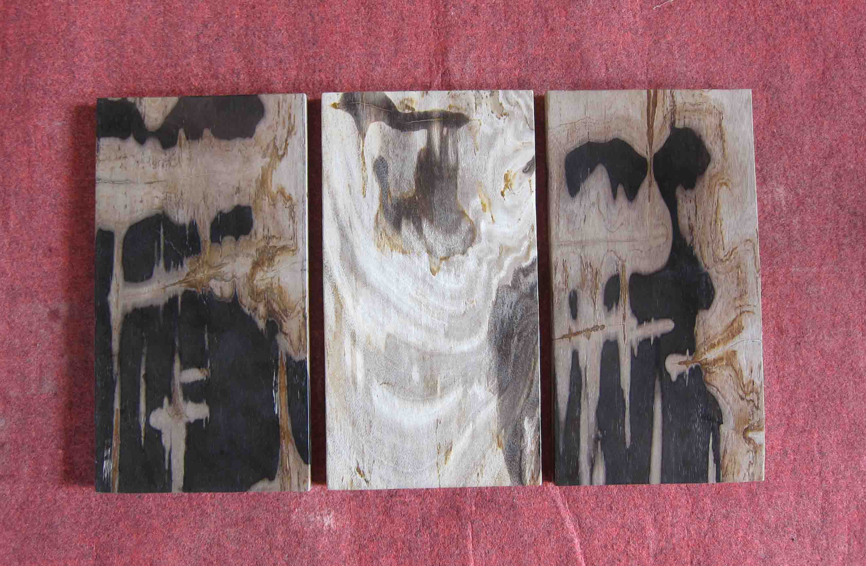 Fossil stone tile indogemstone unusual home decor for Petrified wood furniture for sale