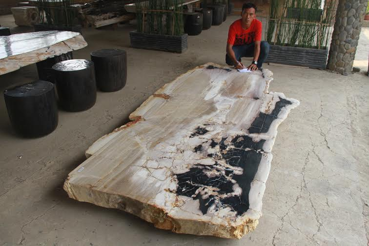 PETRIFIED WOOD. PETRIFIED WOOD TABLE TOP SLAB ...