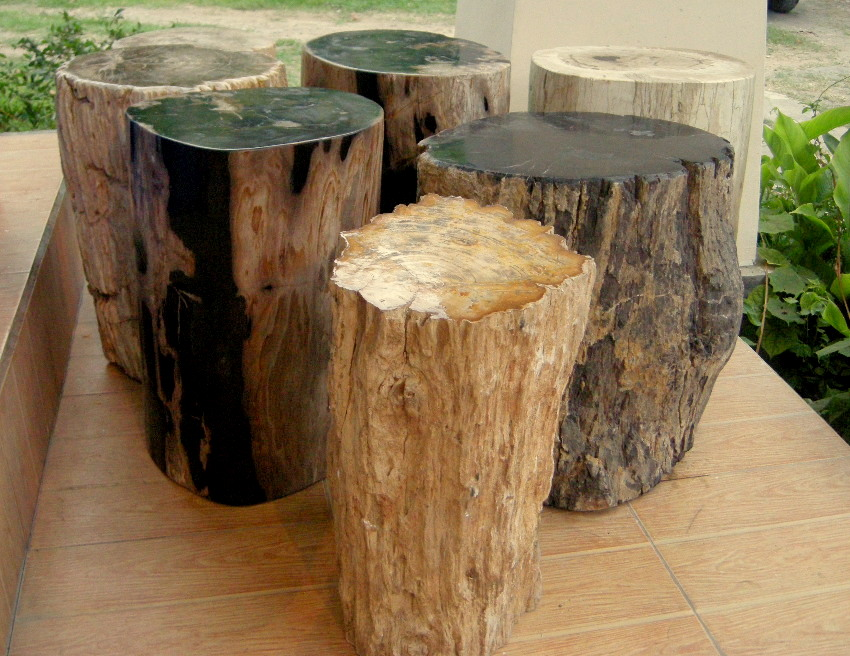 Petrified Wood Furniture Uk Indogemstone Unusual Home Decor
