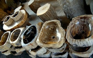 Polished Petrified Wood