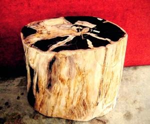 Petrified Wood Stools on Sale