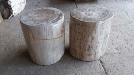 Petrified Wood Sitting Stools